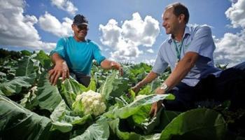 Conselho criado por Agnelo Queiroz definirá áreas para reforma agrária